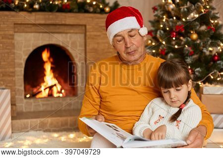 Mature Man Reading Story With His Granddaughter In Living Room Decorated With Christmas Tree And Gar