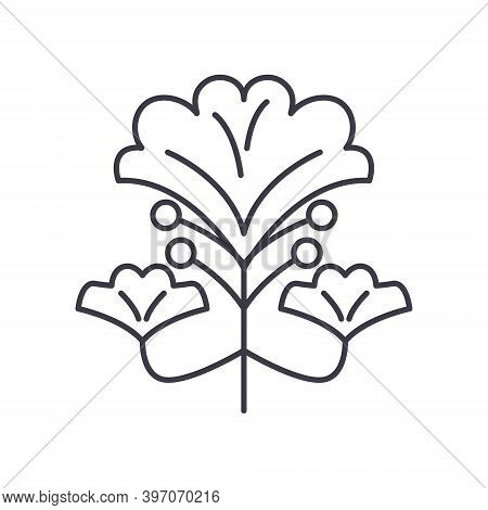 Gingko Biloba Icon, Linear Isolated Illustration, Thin Line Vector, Web Design Sign, Outline Concept