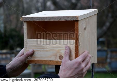 Hands Attach The Box For Black Scythe Turdus Merula With An Opening Of 8cm, Nesting Up To 2m In Heig