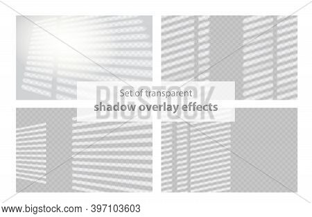 Shadow Overlay Effect. Set Of Transparent Shadow Overlay Effects For Branding. Scenes Of Natural Lig