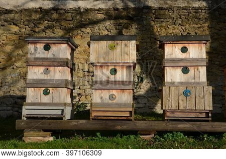 Apiary In The Morning Covered With Snow Is On The Wooden Hives A Lot Of Hives Fruit Trees Apple Tree
