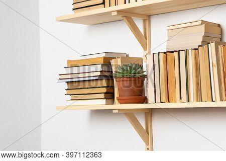 Light Wooden Bookshelves With Hardback Overturned Books In White Interior, Indoor Flowers On The She