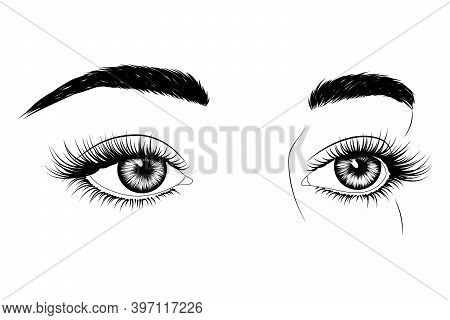 Fashion Illustration. Black And White Hand-drawn Image Of Eyes With Eyebrows And Long Eyelashes. Vec