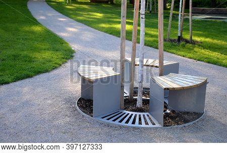 Part Of The Lattice Around The Tree Is Three Benches Of Seats Which Surround The Planted Tree In A C