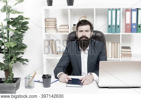 Lawyer Agency. Man Bearded Hipster Boss Sit In Leather Armchair Office Interior. Boss At Workplace.