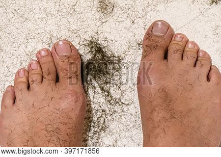 The Legs Of A Man In A White Bathtub, There Is A Lot Of Shaved Hair Around. The Process Of Shaving L