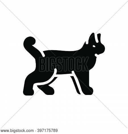Black Solid Icon For Animal Cattle Beast Livestock Brute Fauna Natural Dog Creature