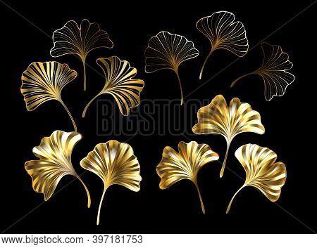 Set Of Gold, Jewelry, Shiny Ginkgo Biloba Leaves On Black Background. Ginko Biloba.