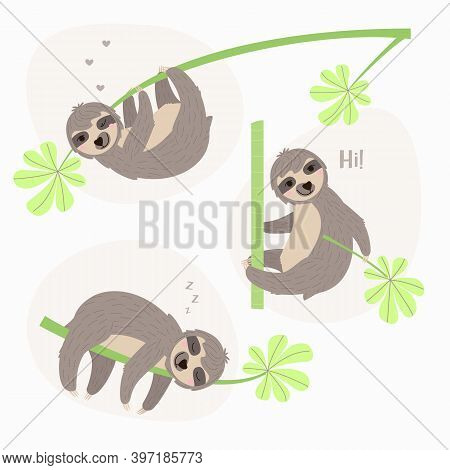Set Illustration Of A Sloth Hanging On Branch. Cheerful Sloth Winks And Smiles. The Animal Is Restin