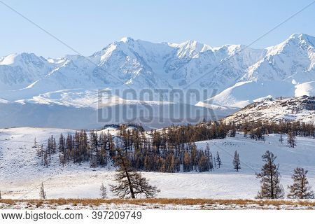Beautiful Snowy Landscape With Mountains In The Background. Steppe Landscape Of The Altai Mountains