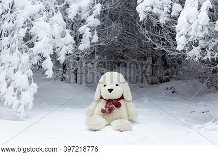 Stuffed Bear Wearing A Woman's Knit Scarf In The Snow With Snowflakes Falling, Beautiful Winter Imag