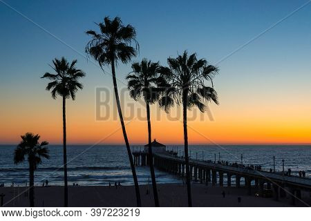Palm Trees At Sunset In Manhattan Beach. Vintage Processed. Fashion Travel And Tropical Beach Concep
