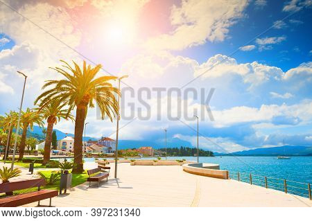 Beautiful Sea Promenade With Palms In Tivat, Montenegro. Kotor Bay, Adriatic Sea. Famous Travel Dest