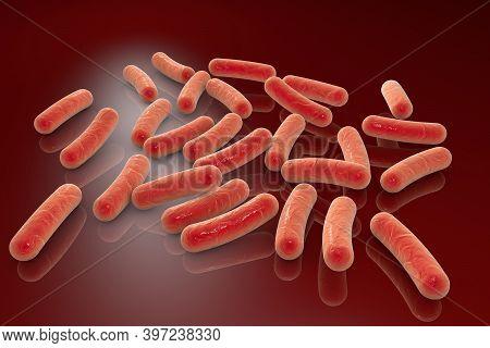 Illustration Of Rod-shaped Bacteria, Escherichia Coli, Salmonell