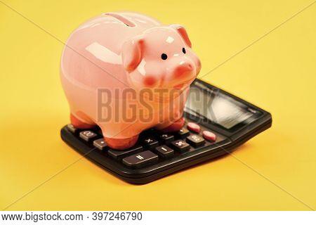 Piggy Bank Pink Pig And Calculator. Credit Debt Concept. Economics And Profit Management. Economics