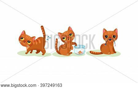 Naughty Playful Kitten Catching Fish In Aquarium And Pissing Vector Set