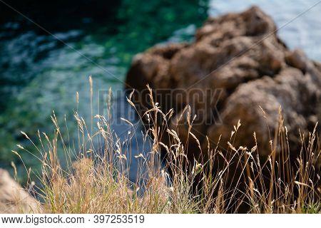 Dry Grass And Wonderful Green Crystal Clear Water Background. Makarska, Croatia