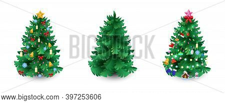 Set Of Christmas Evergreen Trees. Spruce, Pine Or Fir Without Decorations And Two With Holiday Ornam