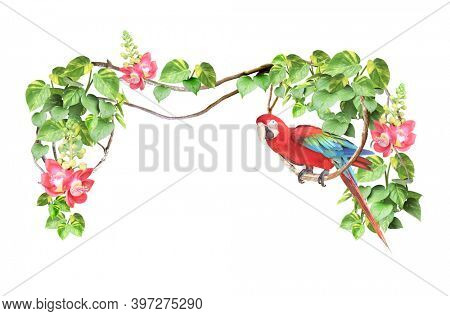 Ara parrot sits on a liane among tropical leaves and flowers. Frame with liana branches and Scarlet Macaw. Exotical border with plants of jungle and Ara macao. Isolated on white background
