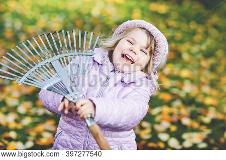 Little Toddler Girl Working With Rake In Autumn Garden Or Park. Adorable Happy Healthy Child Having