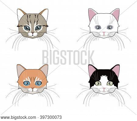Set Of Cats Heads. Face Kitten, Whiskers And Ears, Muzzle And Wool.