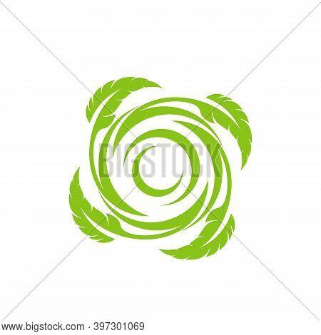 Feather With Tornado Logo Vector Template, Creative Tornado Logo Design Concepts, Illustration, Icon