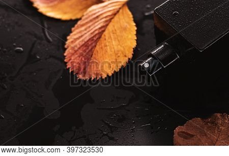 Perfume And Yellow Leaves On A Wet Background