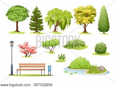 Forest And Park Trees Vector Illustration. Cartoon Various Green Summer Deciduous And Evergreen Tree