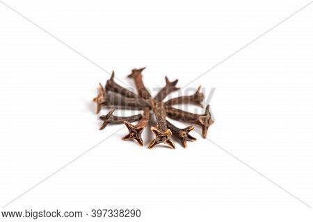 Dry Organic Clove Isolated On A White Background