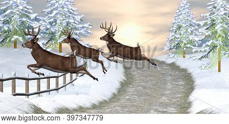 Whitetail Deer Jumping Fence 3d Illustration - A Country Road Fence Is No Hindrance To Three Whiteta