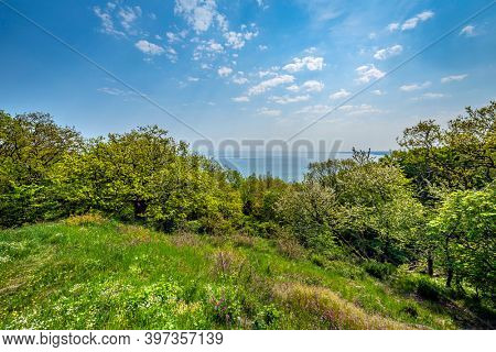 Spring view of forest and sea in south Sweden