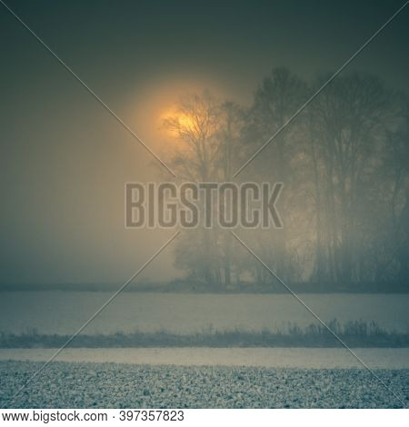 A Misty Lanscape With A Snowfall During The Sunrise. Rural Lanscape Of Snowstorm In The Morning. Mis