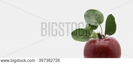Banner Design For The Site With The Image Of A Part Of A Red Apple.