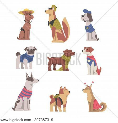 Cute Dogs In Festive Costumes Set, Funny Pets Animals Characters Dressed In Costume For Masquerade,