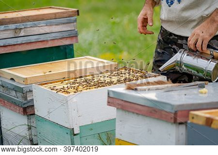 Colorful Hives Of Bees On A Meadow In Summer. Hives In An Apiary With Bees Flying To The Landing Boa