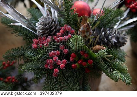 Beautiful Arrangement From Natural Cones, Red Berries, Spruce Sprigs For Festive Interior Decoration