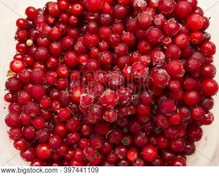 Frozen Food, Frozen Lingonberries. Frozen Lingonberries In A Container. Preservation Of Vitamins