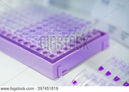 Pcr Well Plate On 96 Well Microplate With Biological Samples