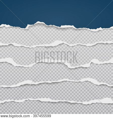 Pieces Of Torn, Ripped Dark Blue And White Paper Strips With Soft Shadow Are On Grey Transparent Bac