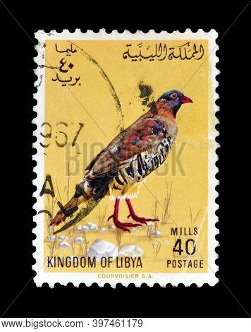 Libya - Circa 1965 : Cancelled Postage Stamp Printed By Libya, That Shows Barbary Partridge (alector