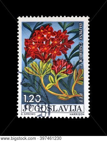 Yugoslavia - Circa 1975 : Cancelled Postage Stamp Printed By Yugoslavia, That Shows The Garland Flow