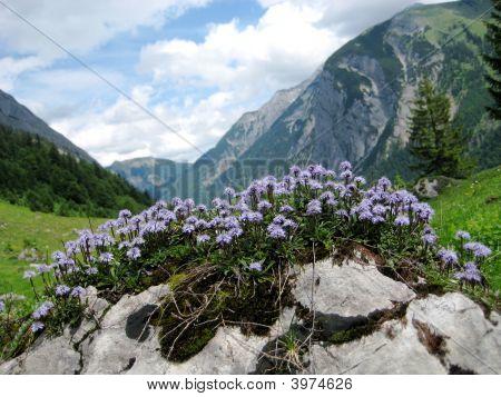 Eng Alm In Austria