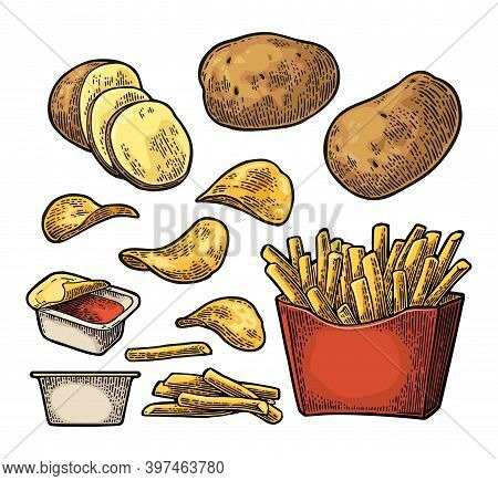 French Fry Stick Potato In Paper Box And Chips.