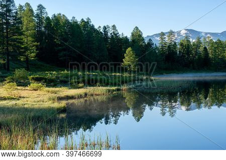 The Calm Water Surface Of A Forest Lake, Reflection Of Trees. Foreground. Fog And Sunbeams, Morning