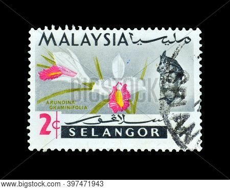 Malaysia - Circa 1965 : Cancelled Postage Stamp Printed By Malaysia, That Shows Orchids- Arundina Gr