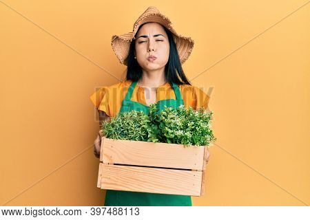 Beautiful young woman wearing gardener apron holding wooden plant pot puffing cheeks with funny face. mouth inflated with air, catching air.