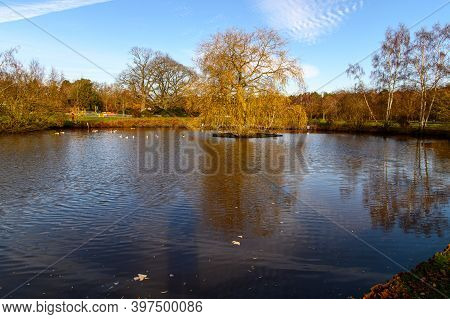 The Pond On The Village Green At Pirbright, Surrey, Uk