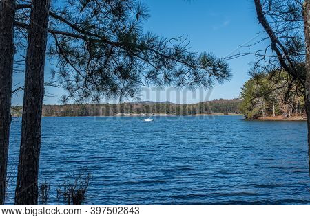 Standing On The Shoreline Looking Through The Trees At A Man Fishing From The Boat In The Lake With