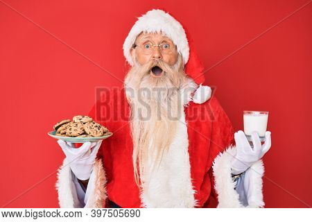Old senior man with grey hair and long beard wearing santa claus costume holding cookies and milk afraid and shocked with surprise and amazed expression, fear and excited face.