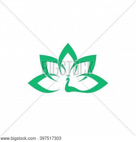 Peacock Logo Vector Template, Creative Peacock Logo Design Concepts, Illustration